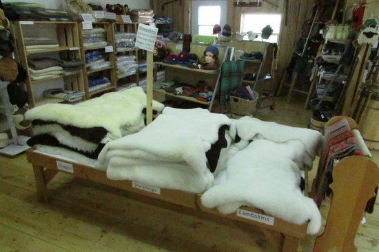 Lismore Sheep Farm Wool Shop : in the shop