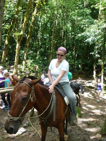 Nauyaca Waterfalls - Horseback Riding Tours: My horse, Sanchez