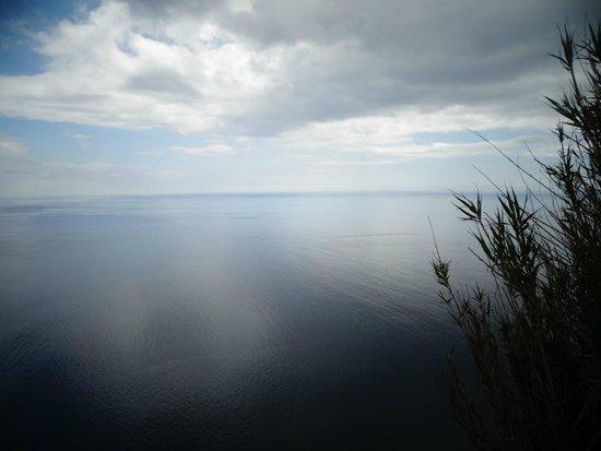 Amazing Tours : Noordkust