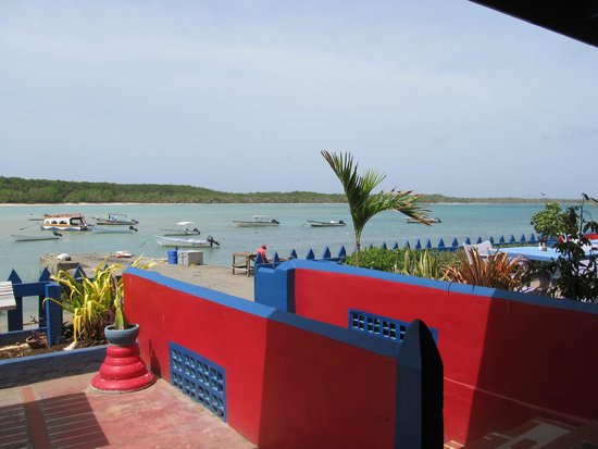 Miller's Guest House : View from restaurant