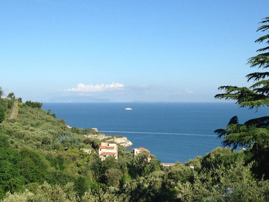 Best Western Hotel La Solara: View from Room 112.