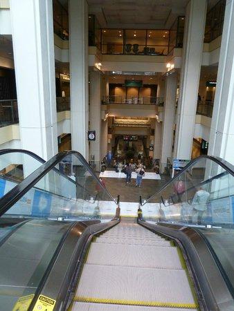 Washington State Convention Center: Escalator cascade