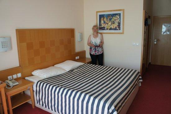 Ramada Hotel and Suites Kranjska Gora: View of room at Ramada/ Grand Prisank