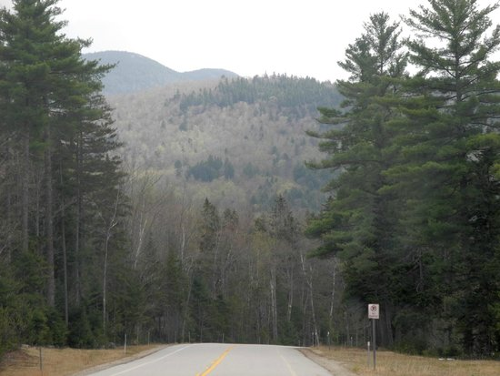 White Mountains National Forest : White Mountains May 2014