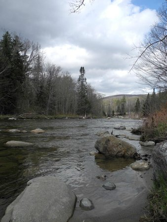 White Mountains National Forest: White Mountains May 2014