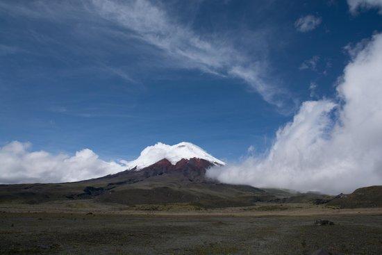 Cotopaxi Volcano: Cotopaxi