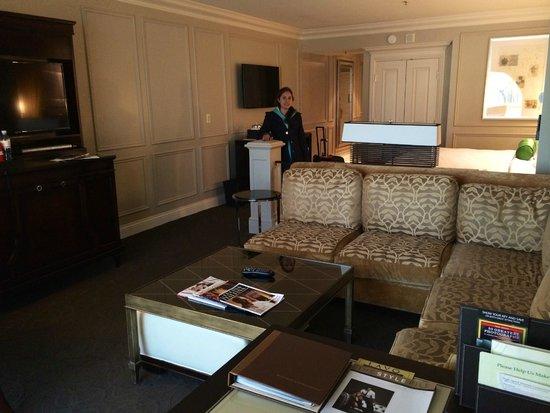 Venetian Resort Hotel Casino: Living room
