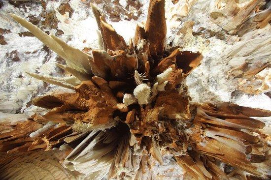 Cuevas del Águila: Grutas del Águila - Arenas de San Pedro - Detalle