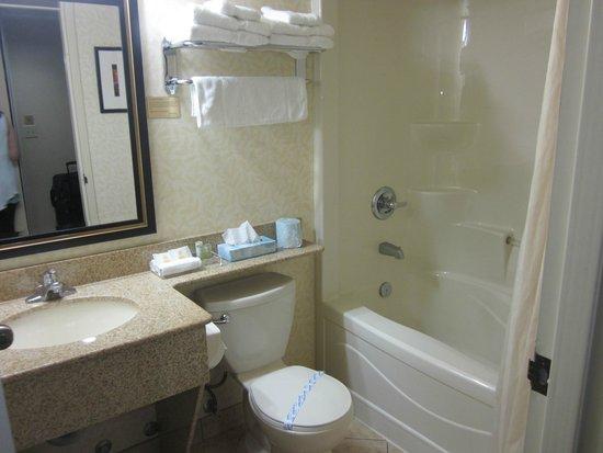 Monte Carlo Inn Barrie Suites: bathroom was clean with good water pressure