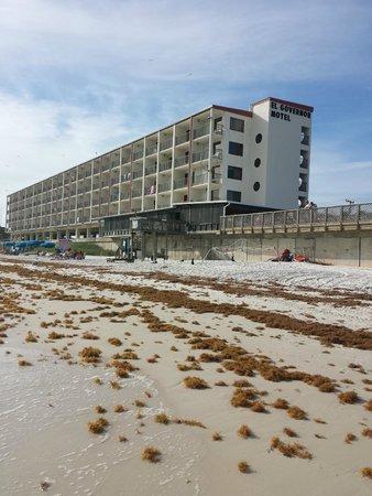 photo1.jpg - Picture of El Governor Motel, Mexico Beach - TripAdvisor