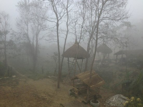 River View Jungle Camp: Early morning mist