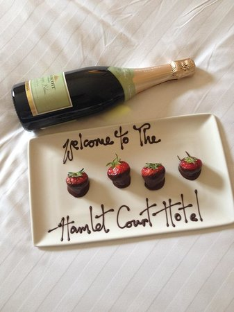 Hamlet Court Hotel: Nice touch on our Anniversary!