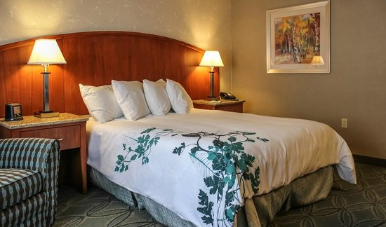 ADA room with one queen bed, roll in shower and over sized sleeping ...
