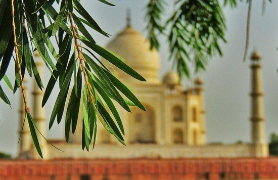 Mehtab Bagh : Attractions