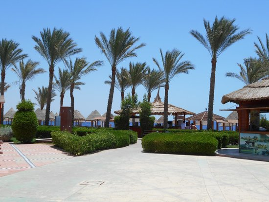 Sharm Grand Plaza : from pool to beach