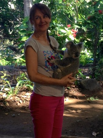 Currumbin Wildlife Sanctuary : Holding a Koala for the first time
