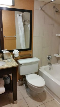 Doubletree Cleveland Downtown / Lakeside: Bathroom