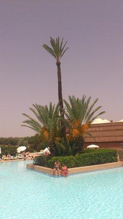 Club Marmara Madina : palmier piscine