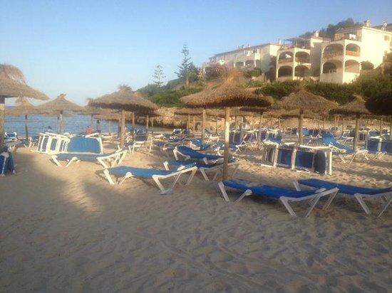 Insotel Cala Mandia Resort & Spa : Beach