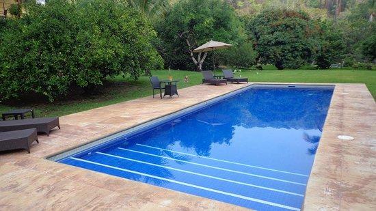 Villa Azalea - Luxury B&B: Alberca exterior