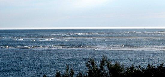 Club Med La Palmyre Atlantique : Vue depuis la chambre 672
