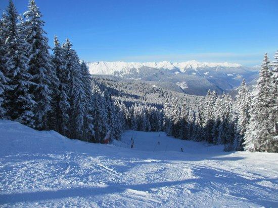 La Tania Ski Area: Folyeres piste in the trees, La Tania
