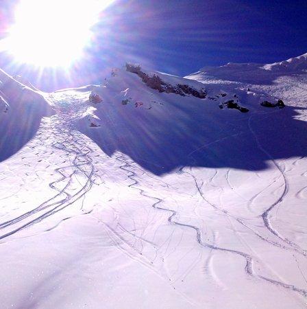 La Tania Ski Area: Fresh tracks