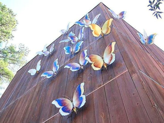 Museum of Life + Science: outside of butterfly house