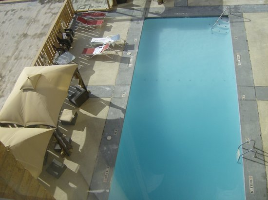 Crowne Plaza Hotel Dallas Downtown : Pool