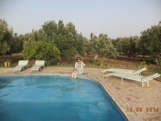 Riad Douar Des Oliviers : coin piscine