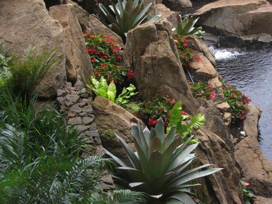 Grand Wailea - A Waldorf Astoria Resort: walking paths and gardens