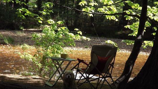 North Pines Campground: Morning Coffee by the River