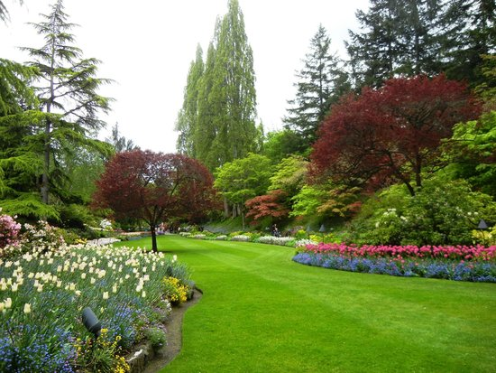 Butchart Gardens Victoria Bc Picture Of The Butchart Gardens Central Saanich Tripadvisor