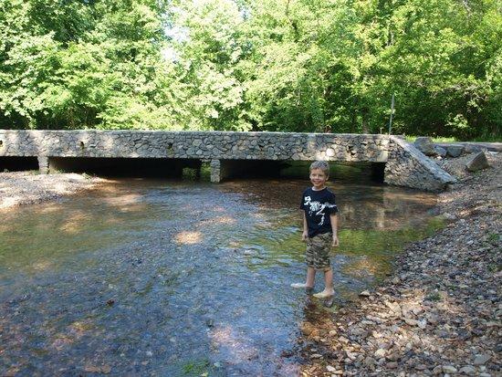 Mousetail Landing: Creek/Bridge