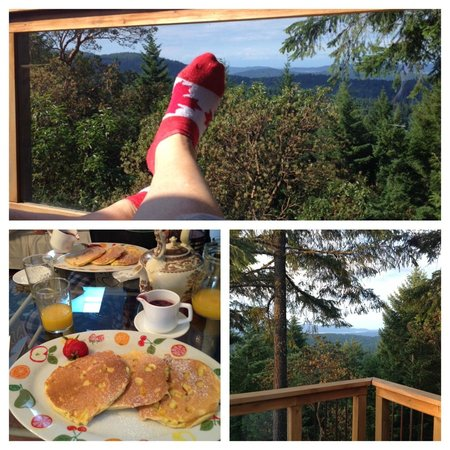 Armand Heights Bed and Breakfast: The view from the Pine Room and one of the yummy breakfasts.