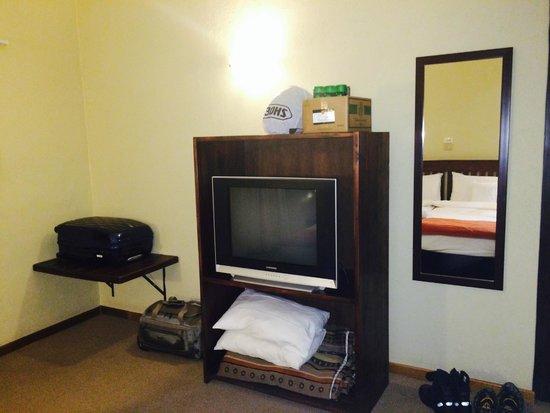 Hotel Numbi & Garden Suites : TV cabinet