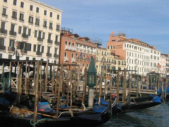 Venice Gold : Venice