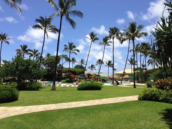Kauai Beach Resort: Pool area