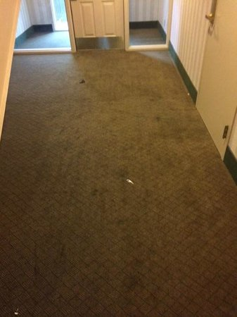 Suburban Extended Stay Hotel, Omaha : Common areas, smelled of urine. note fosspick remained for our entire week stay