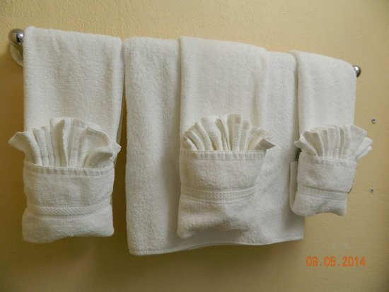 Holiday Inn Port of Miami Downtown: Capricho na suite