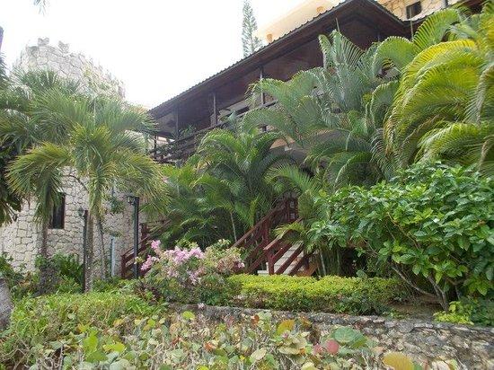 Viva Wyndham Dominicus Palace: Palms