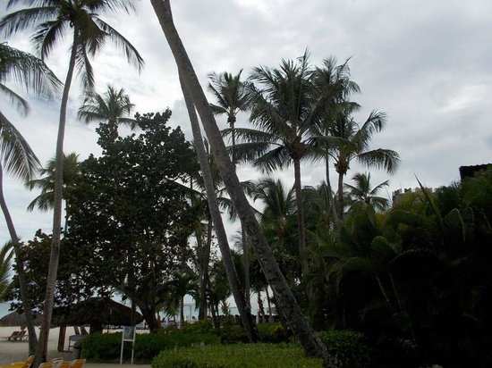 Viva Wyndham Dominicus Palace: At the Palce Beach