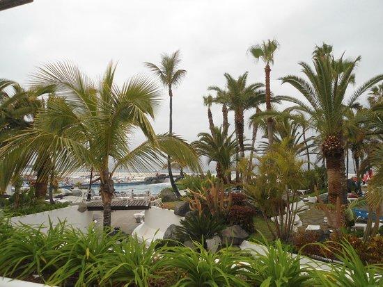 Hotel Puerto de la Cruz: Lagos Martianez