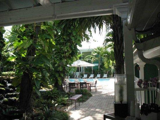 Almond Tree Inn : Taken from breakfast nook facing pool
