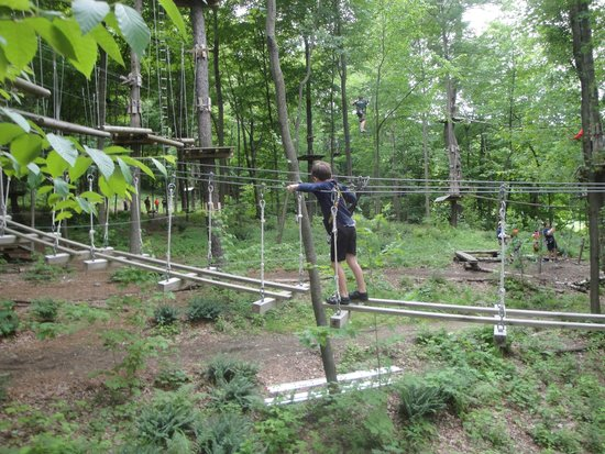 Catamount Aerial Adventure Park : a wobbly bridge