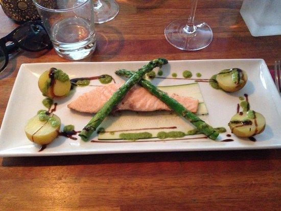 Tight : Salmon a l'uni