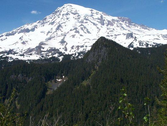 Mount Rainier : Mt Rianier