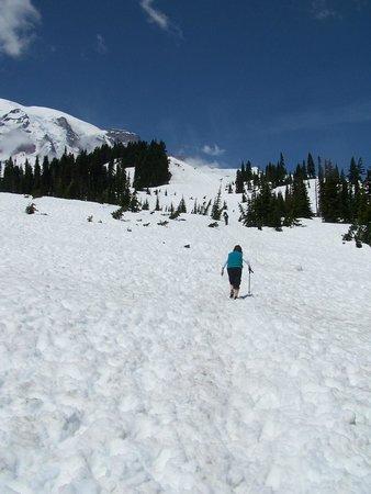 Mount Rainier : M heads to the Top
