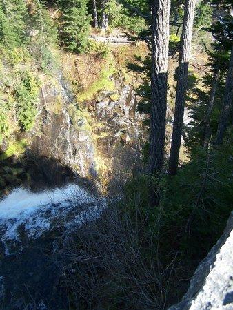 Mount Rainier : Top of Narada Falls