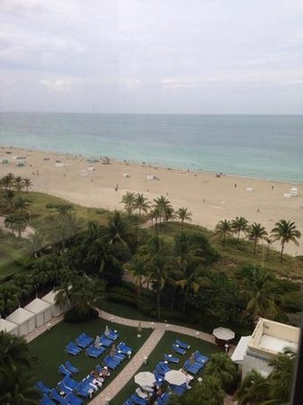 Loews Miami Beach Hotel: south beach